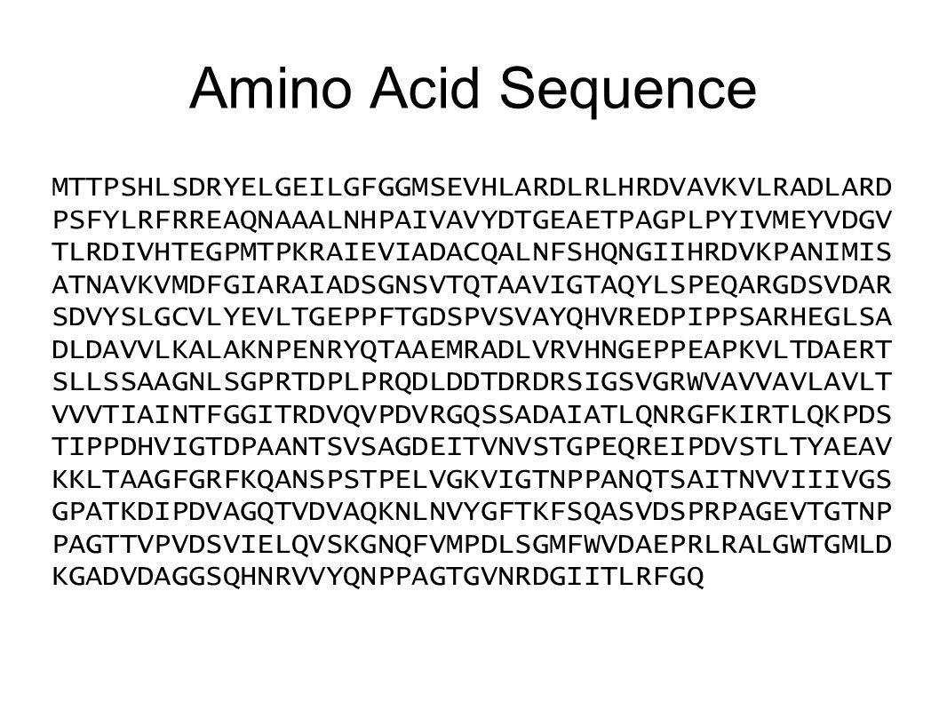 Amino Acid Sequence