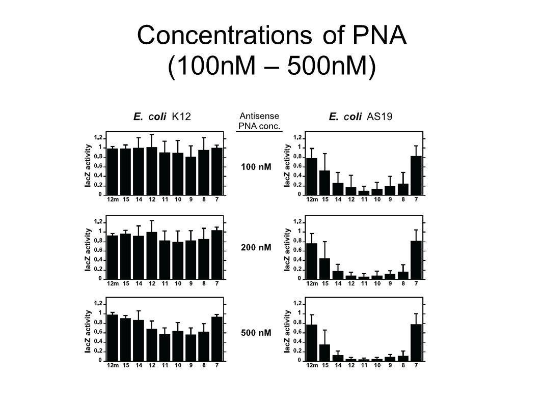 Concentrations of PNA (100nM – 500nM)