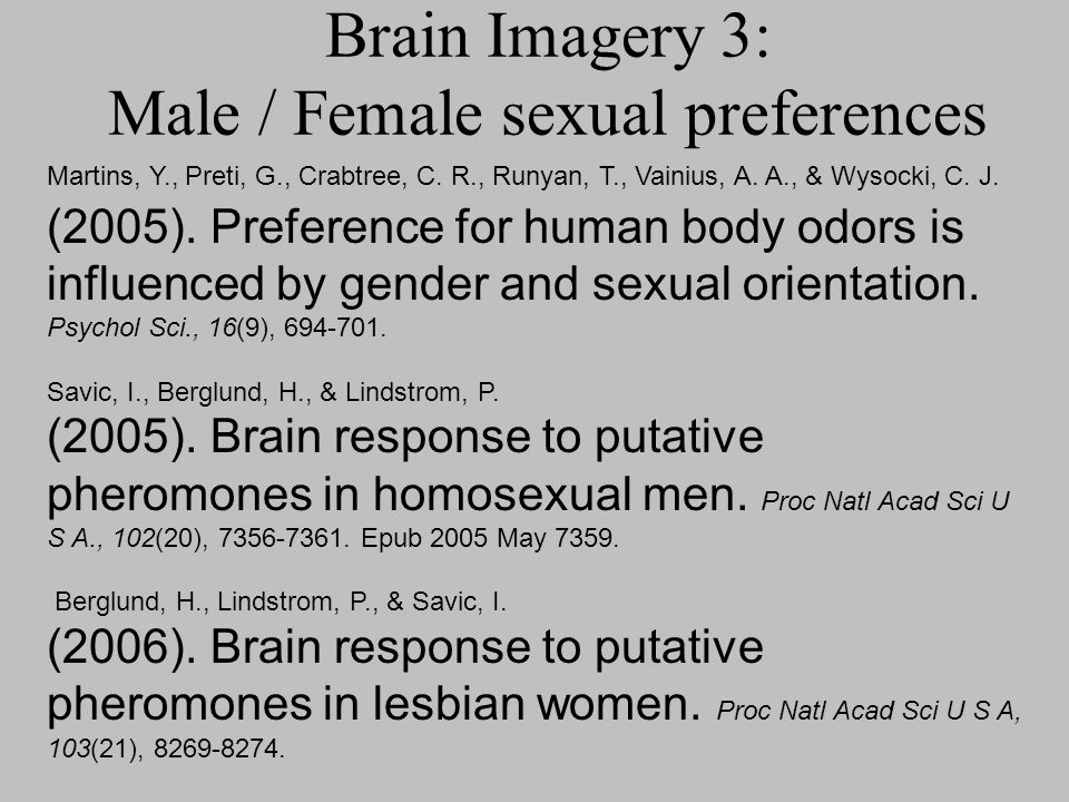 Brain Imagery 3: Male / Female sexual preferences