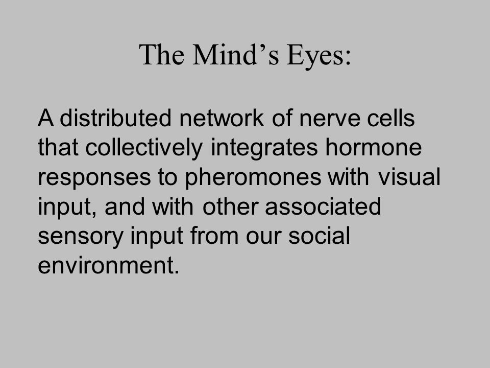 The Mind's Eyes: