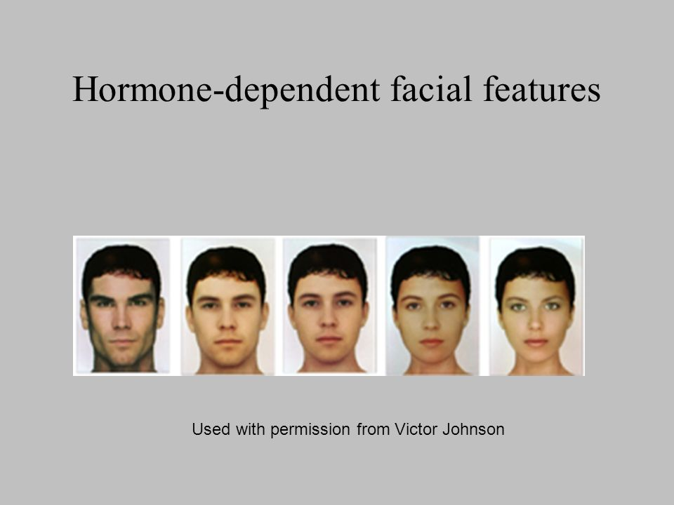 Hormone-dependent facial features