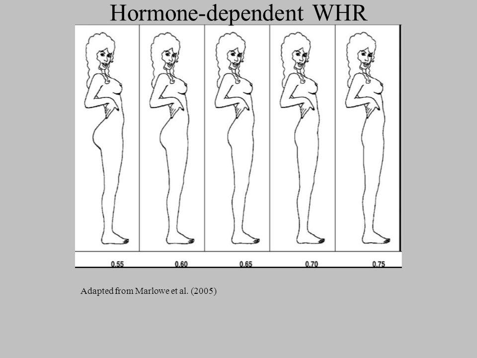 Hormone-dependent WHR