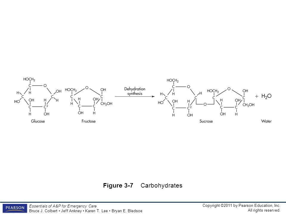 Figure 3-7 Carbohydrates