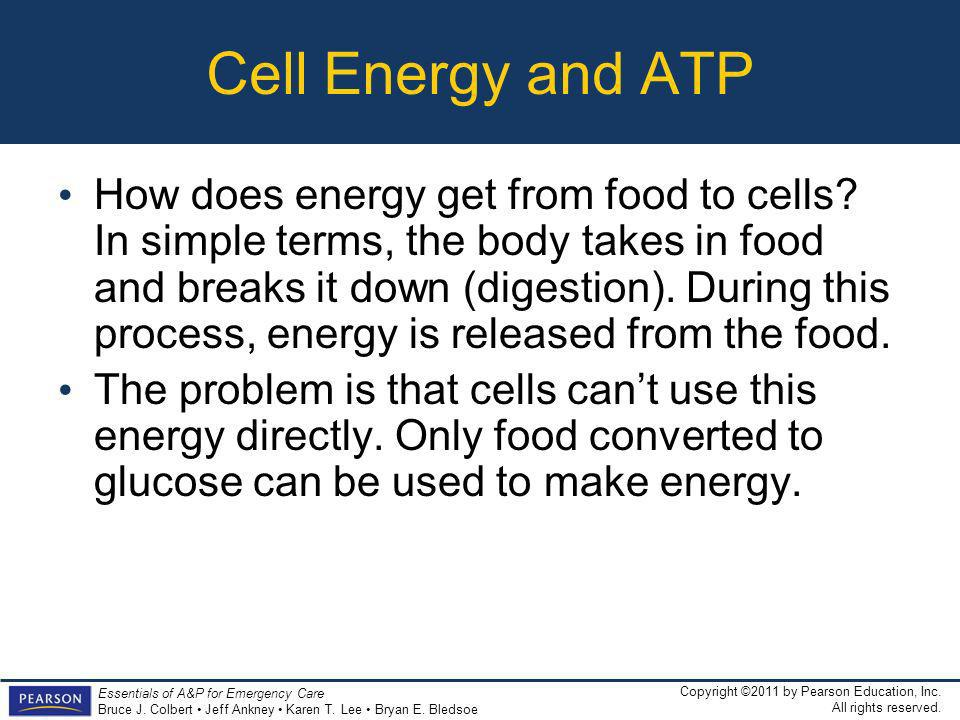 Cell Energy and ATP