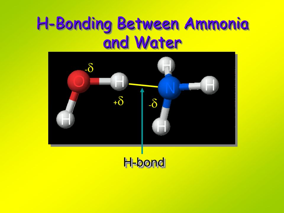 H-Bonding Between Ammonia and Water