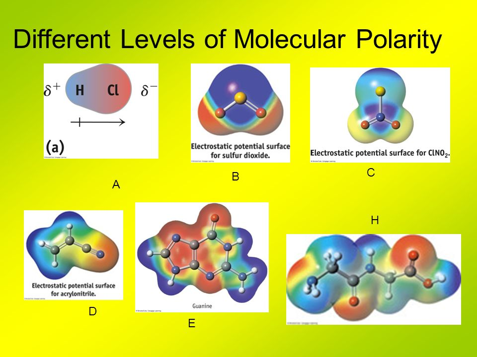 Different Levels of Molecular Polarity