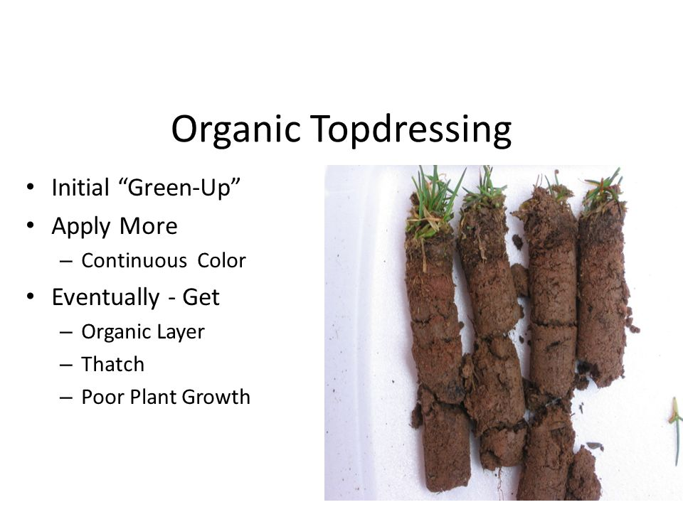 Organic Topdressing Initial Green-Up Apply More Eventually - Get