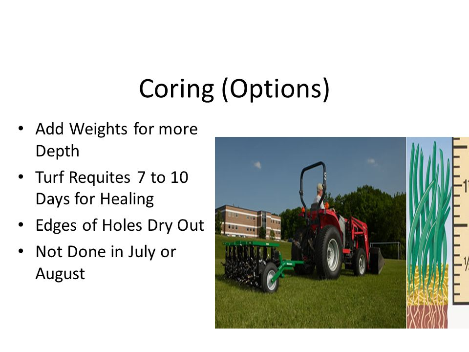 Coring (Options) Add Weights for more Depth