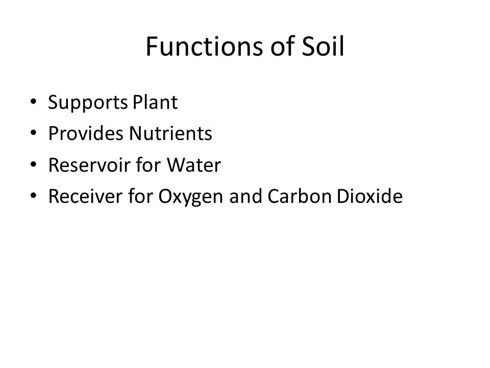 Functions of Soil Supports Plant Provides Nutrients