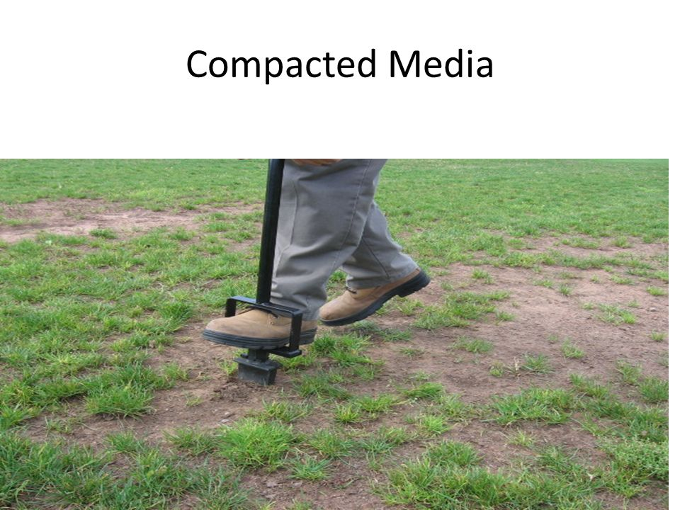Compacted Media