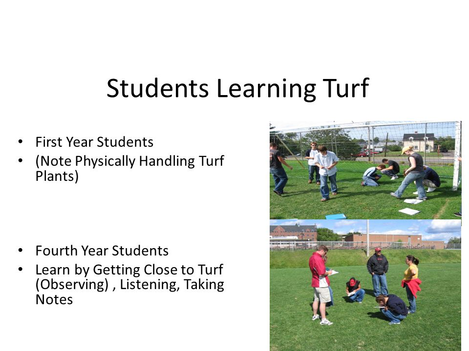 Students Learning Turf