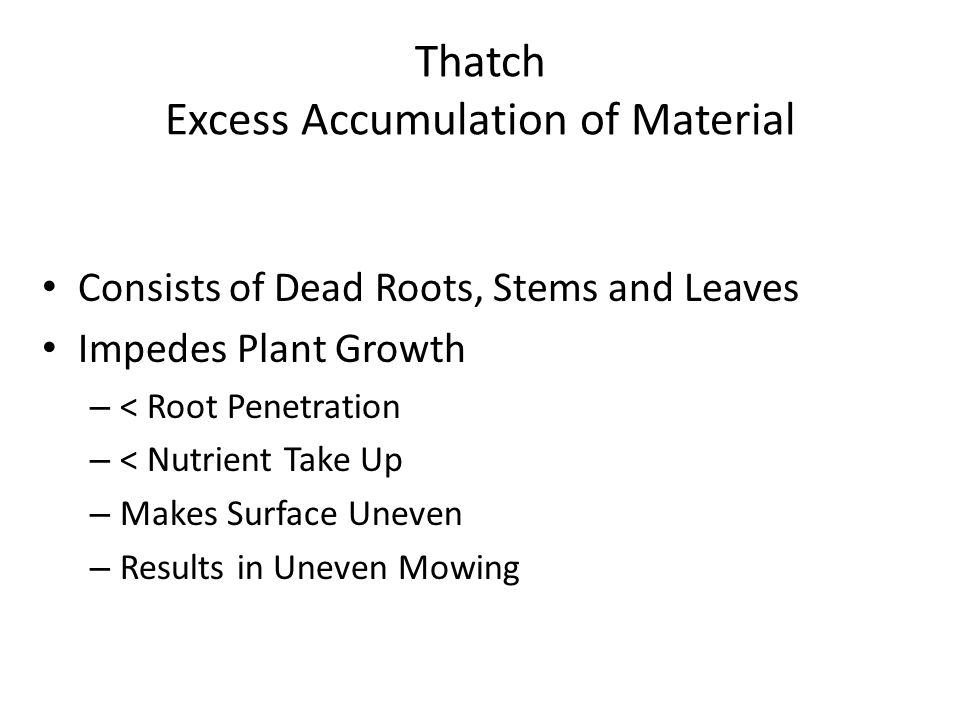 Thatch Excess Accumulation of Material