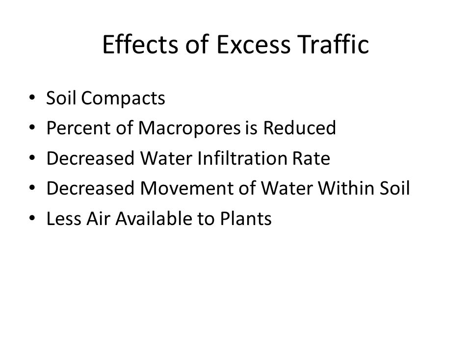 Effects of Excess Traffic