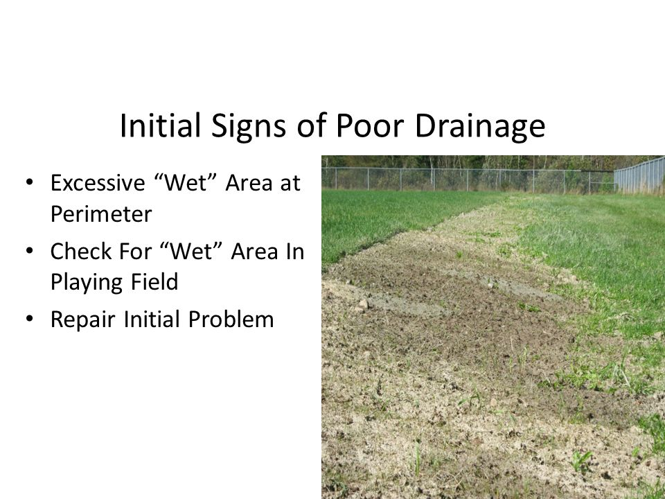 Initial Signs of Poor Drainage