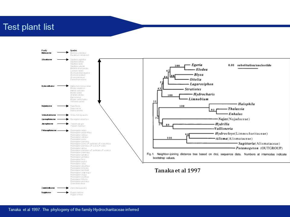 Test plant list Tanaka et al 1997