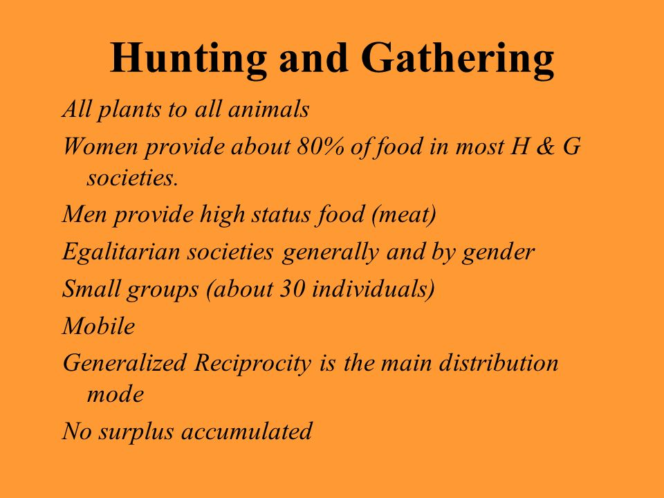 Hunting and Gathering All plants to all animals