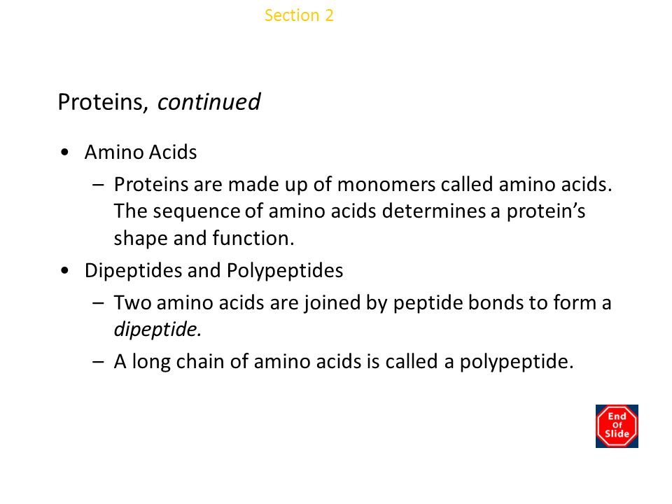 Chapter 3 Proteins, continued Amino Acids