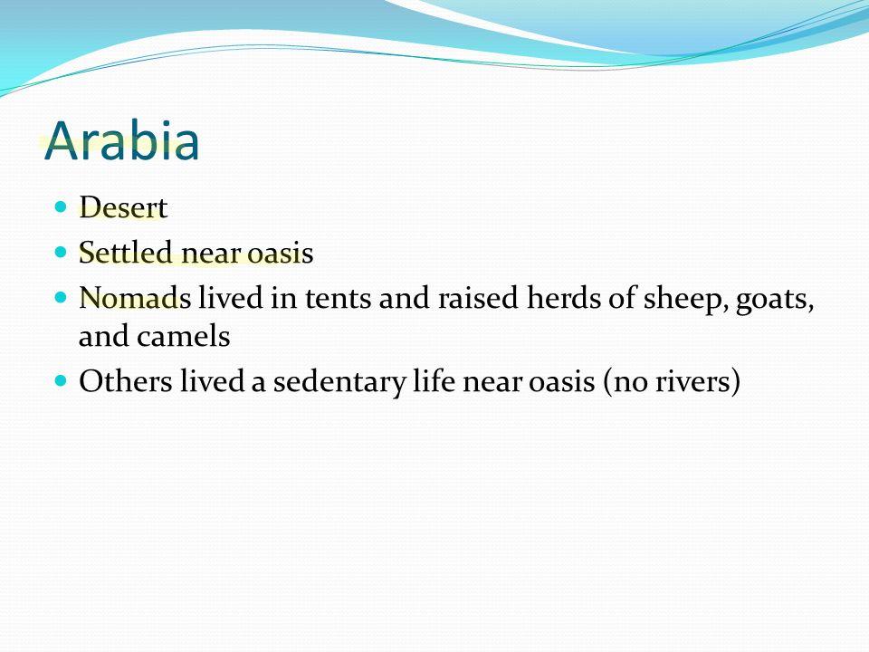Arabia Desert Settled near oasis