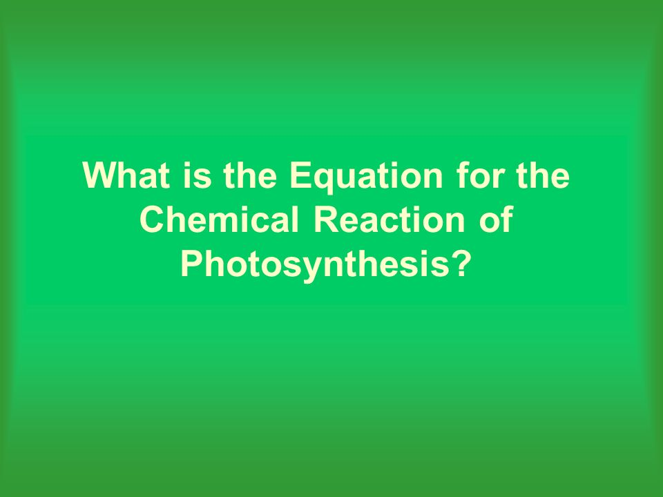 What is the Equation for the Chemical Reaction of Photosynthesis