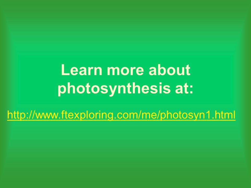 Learn more about photosynthesis at: