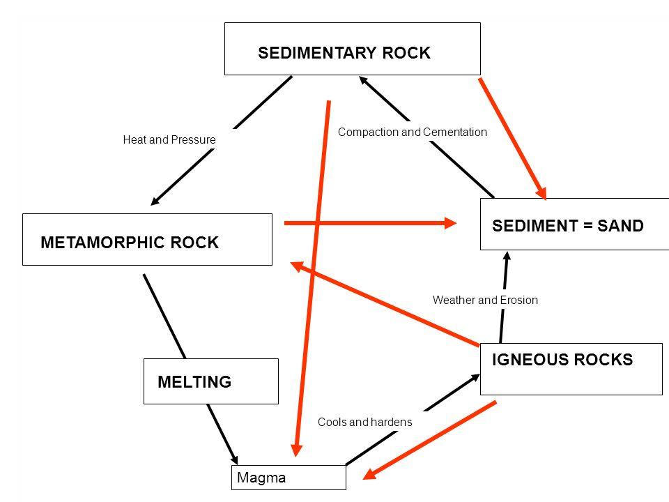 SEDIMENTARY ROCK SEDIMENT = SAND METAMORPHIC ROCK IGNEOUS ROCKS