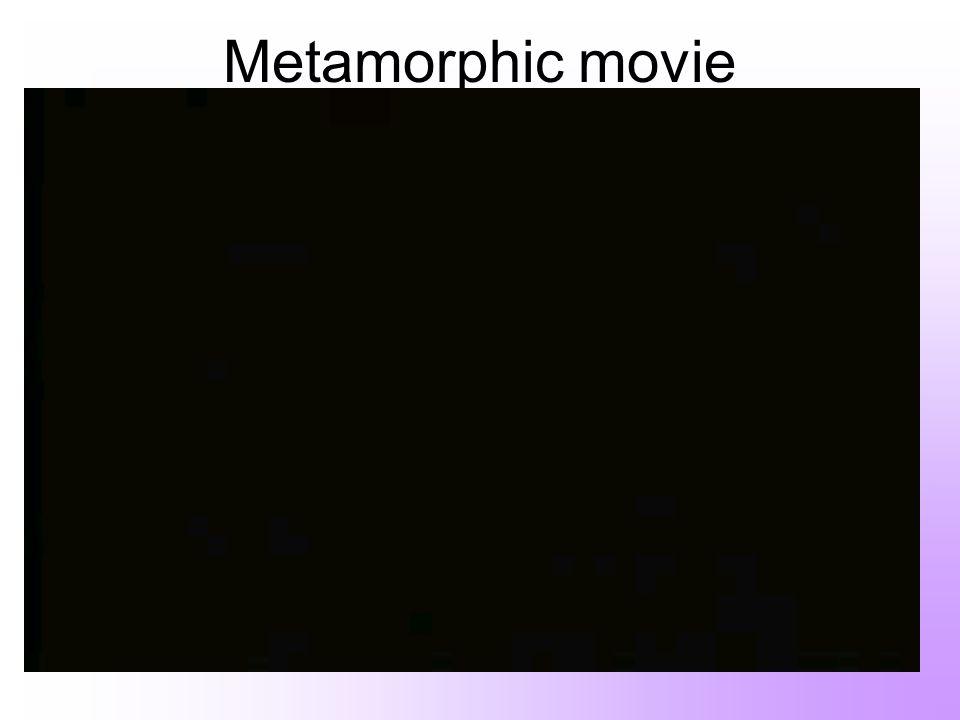 Metamorphic movie
