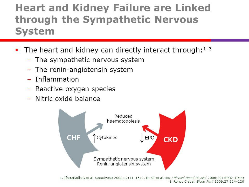 Heart and Kidney Failure are Linked through the Sympathetic Nervous System