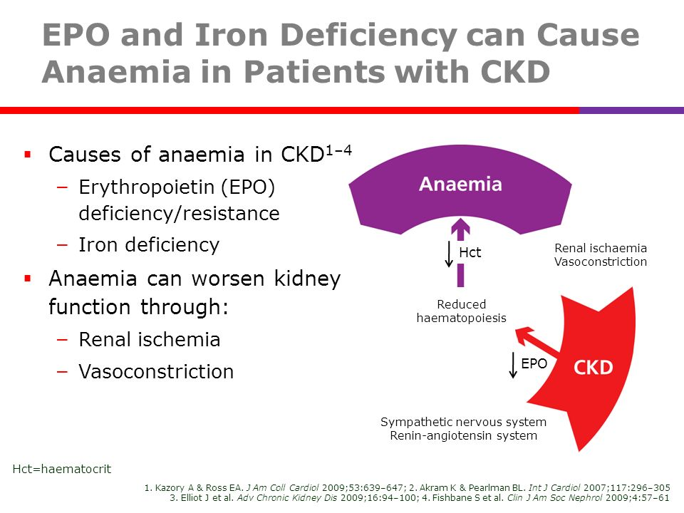 EPO and Iron Deficiency can Cause Anaemia in Patients with CKD