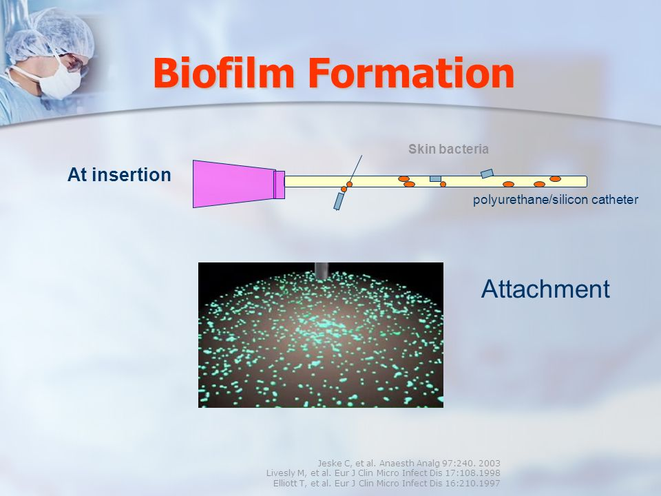 Biofilm Formation Attachment At insertion Skin bacteria