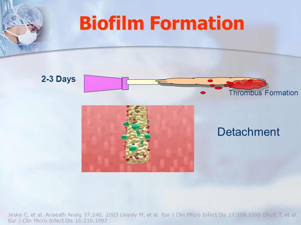 Biofilm Formation Detachment 2-3 Days Thrombus Formation