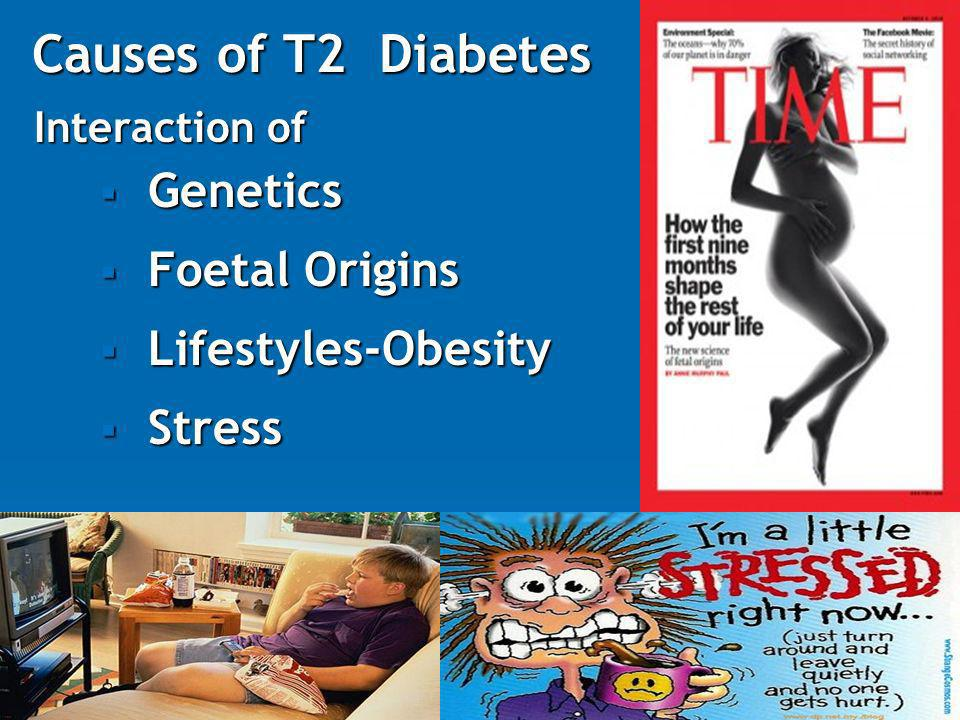 Causes of T2 Diabetes Genetics Foetal Origins Lifestyles-Obesity