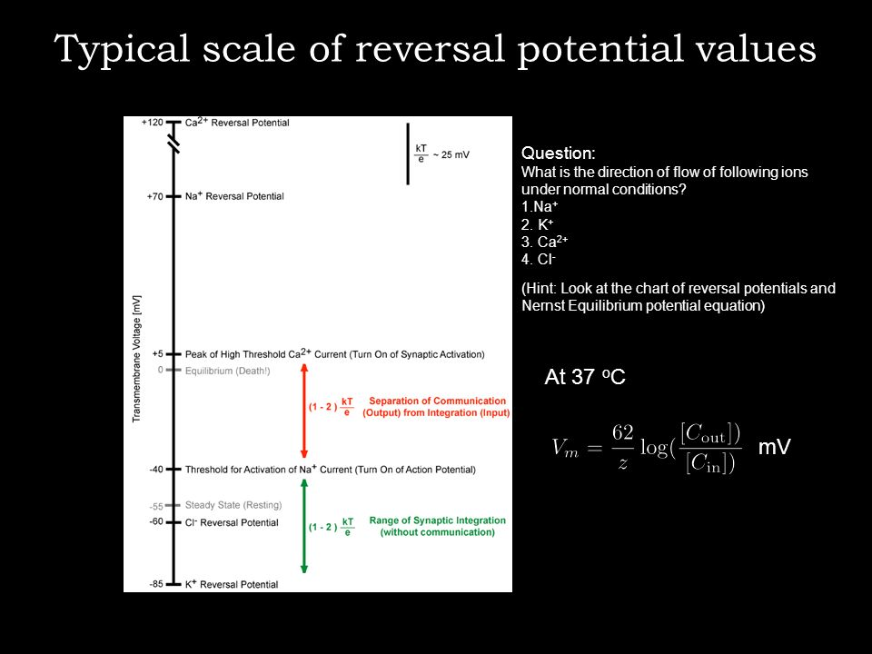 Typical scale of reversal potential values