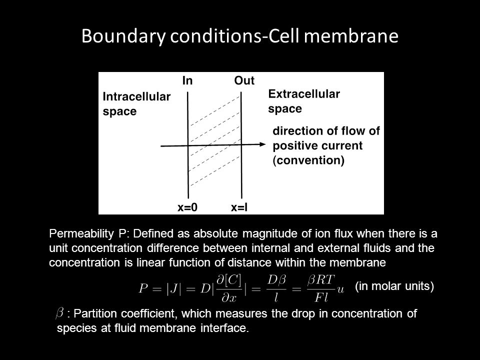 Boundary conditions-Cell membrane