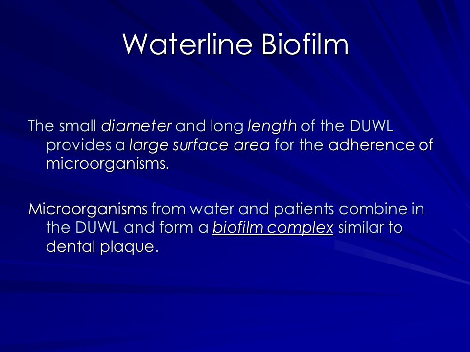 Waterline Biofilm The small diameter and long length of the DUWL provides a large surface area for the adherence of microorganisms.