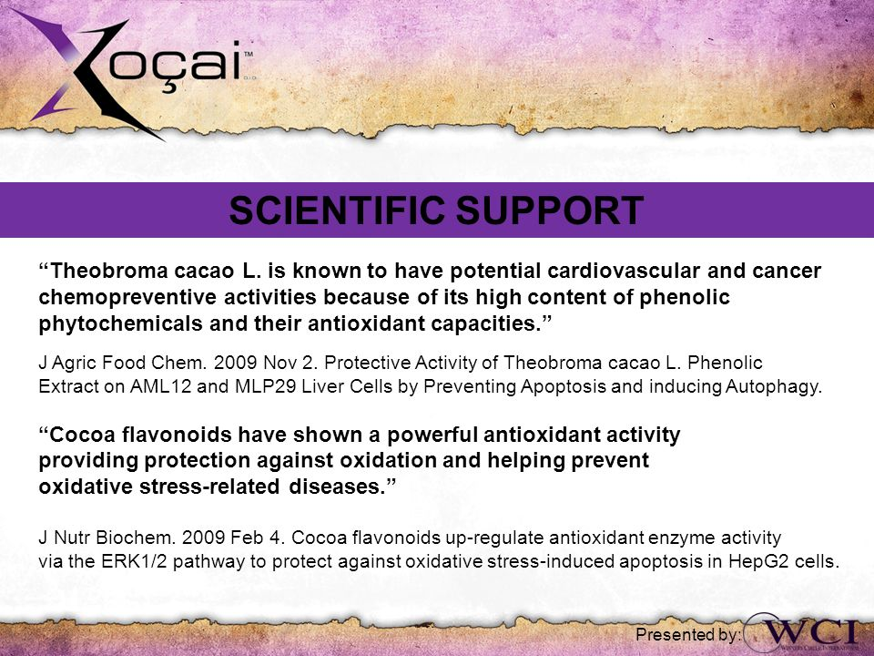 SCIENTIFIC SUPPORT Theobroma cacao L. is known to have potential cardiovascular and cancer.