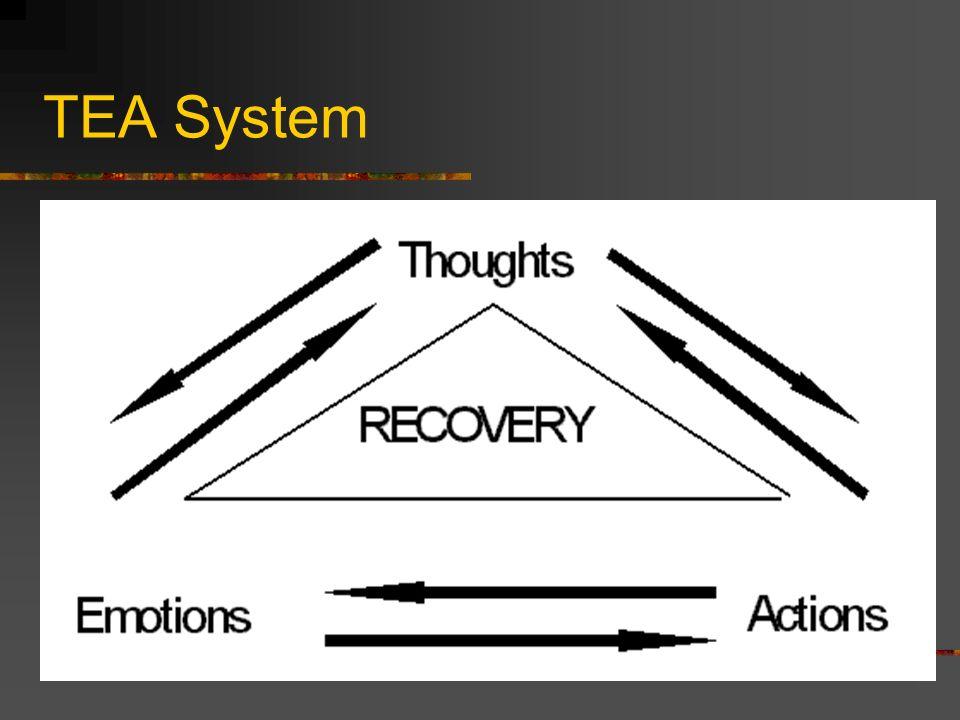 TEA System