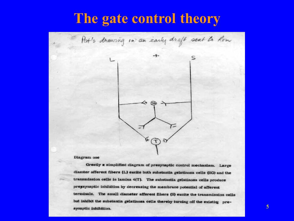 The gate control theory