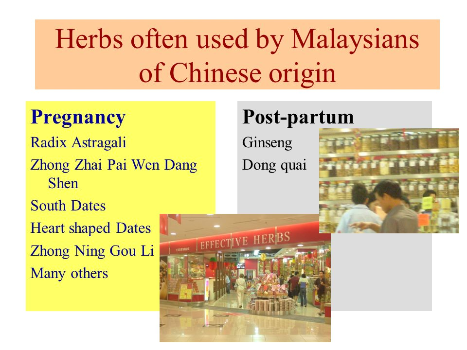 Herbs often used by Malaysians of Chinese origin