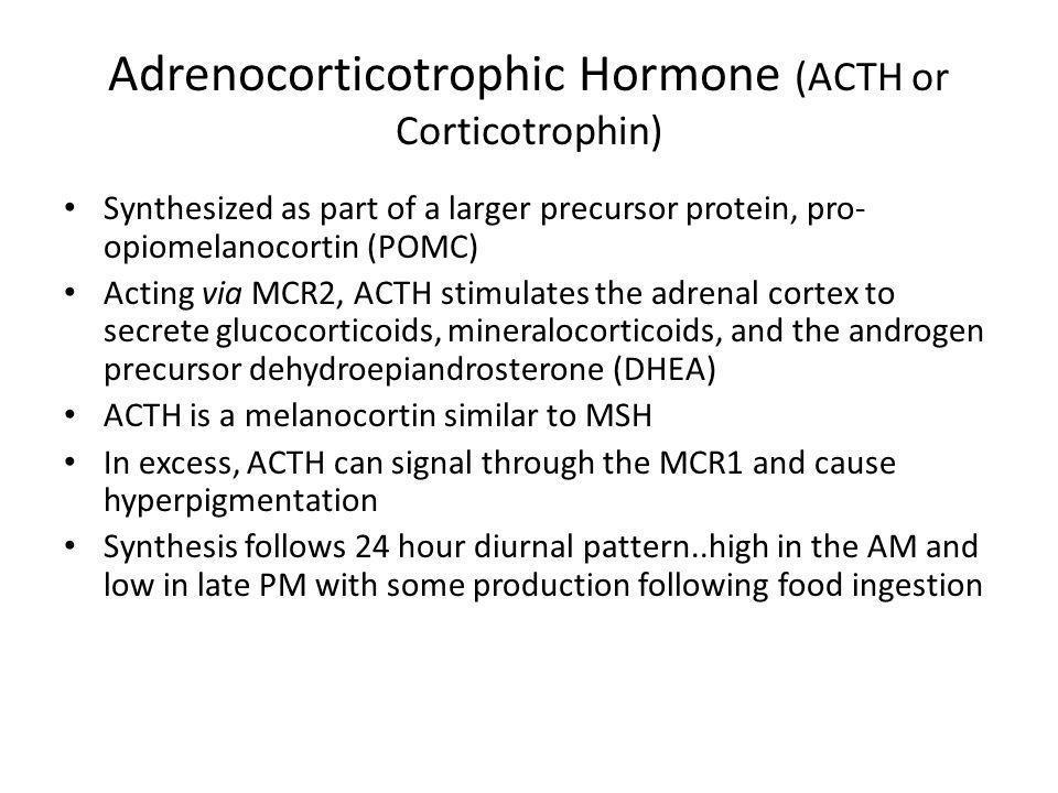 Adrenocorticotrophic Hormone (ACTH or Corticotrophin)