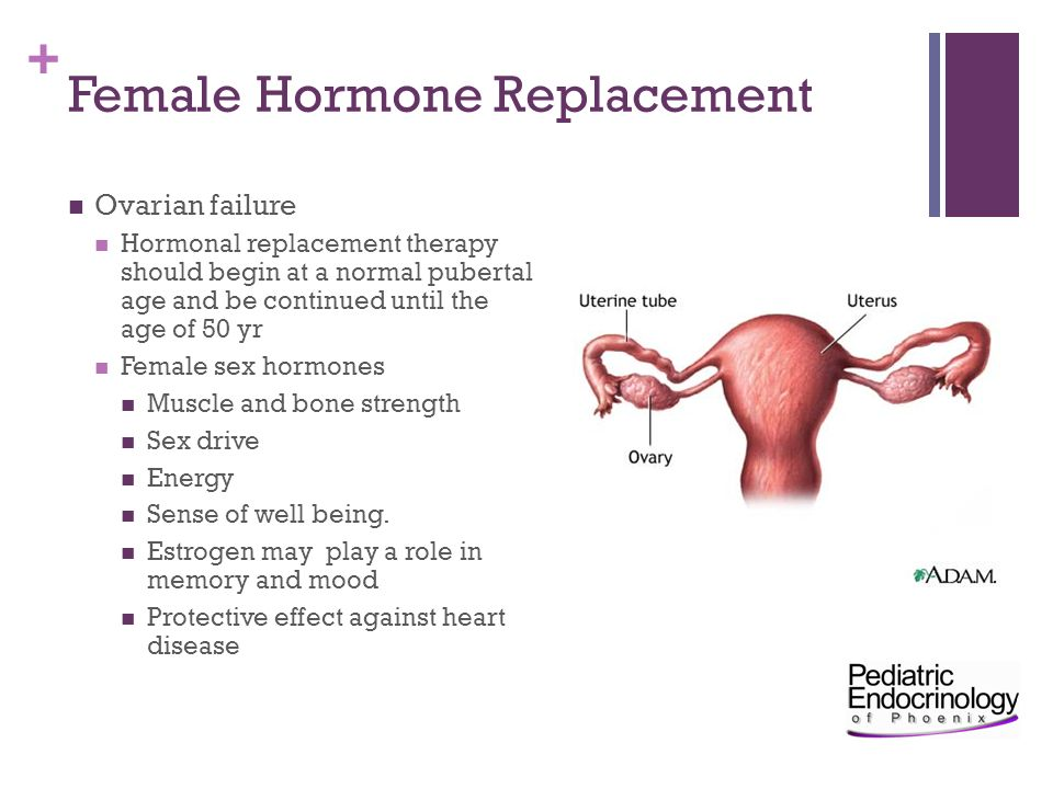 Female Hormone Replacement