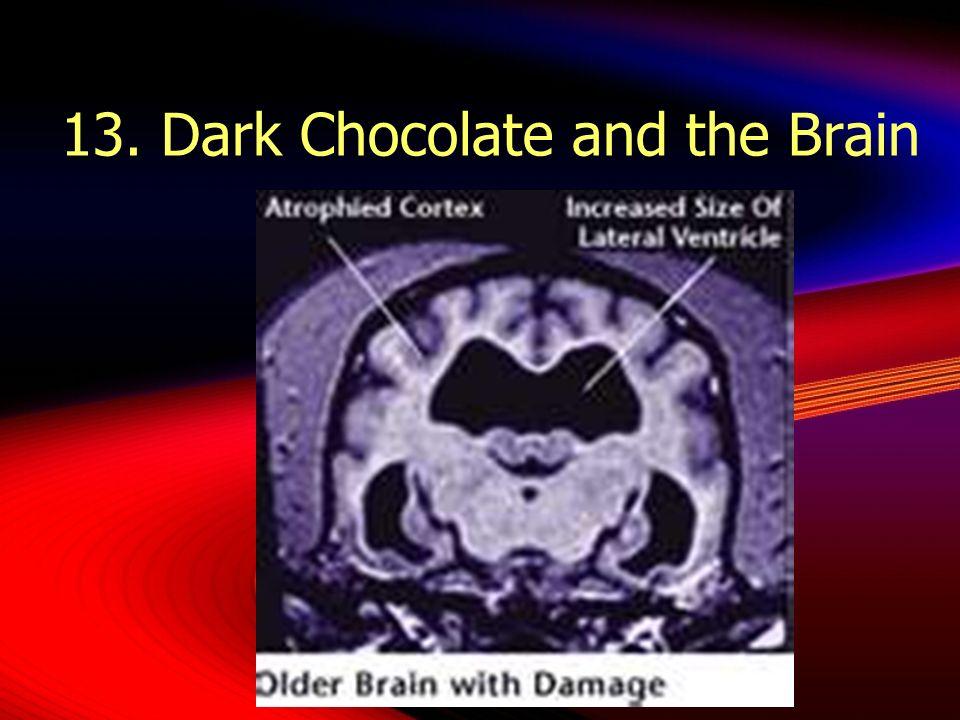 13. Dark Chocolate and the Brain