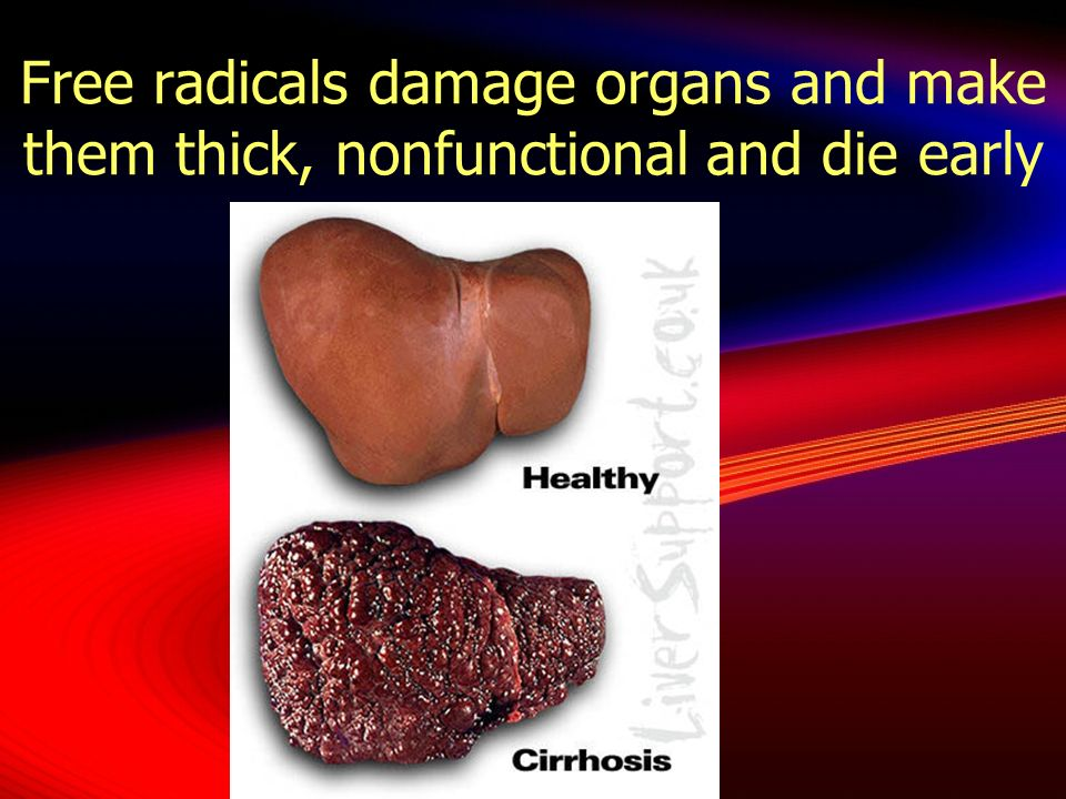 Free radicals damage organs and make them thick, nonfunctional and die early