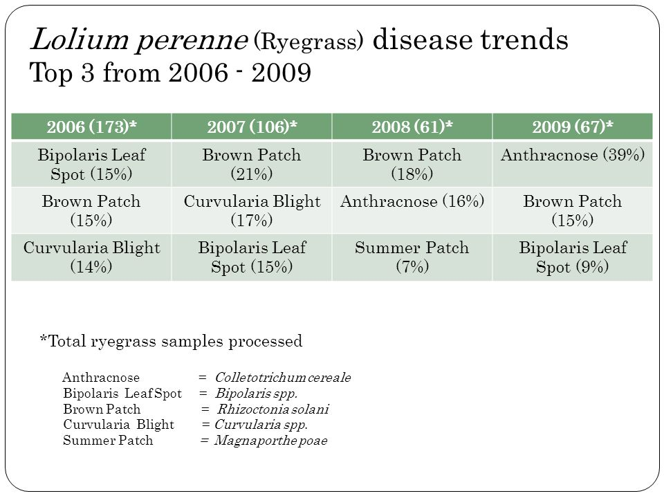 Lolium perenne (Ryegrass) disease trends Top 3 from