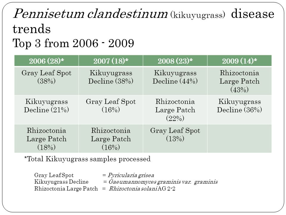 Pennisetum clandestinum (kikuyugrass) disease trends Top 3 from 2006 - 2009