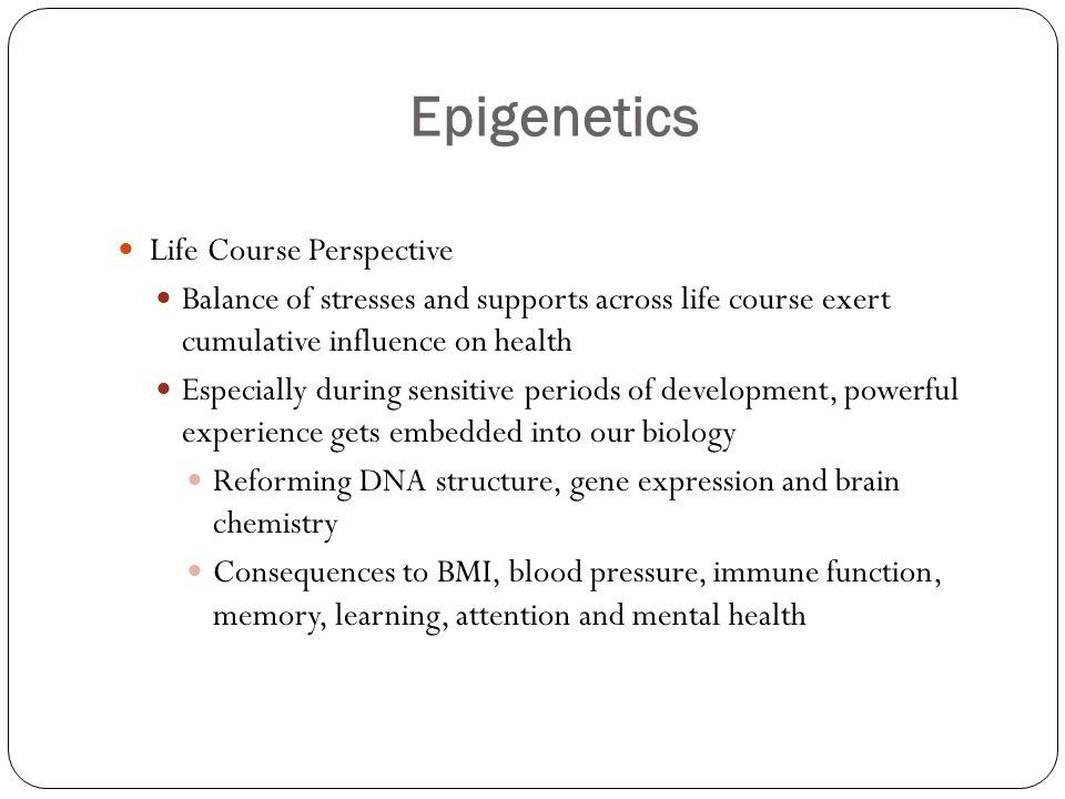 Epigenetics Life Course Perspective