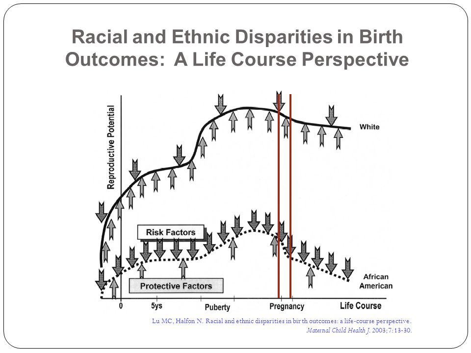 Racial and Ethnic Disparities in Birth Outcomes: A Life Course Perspective