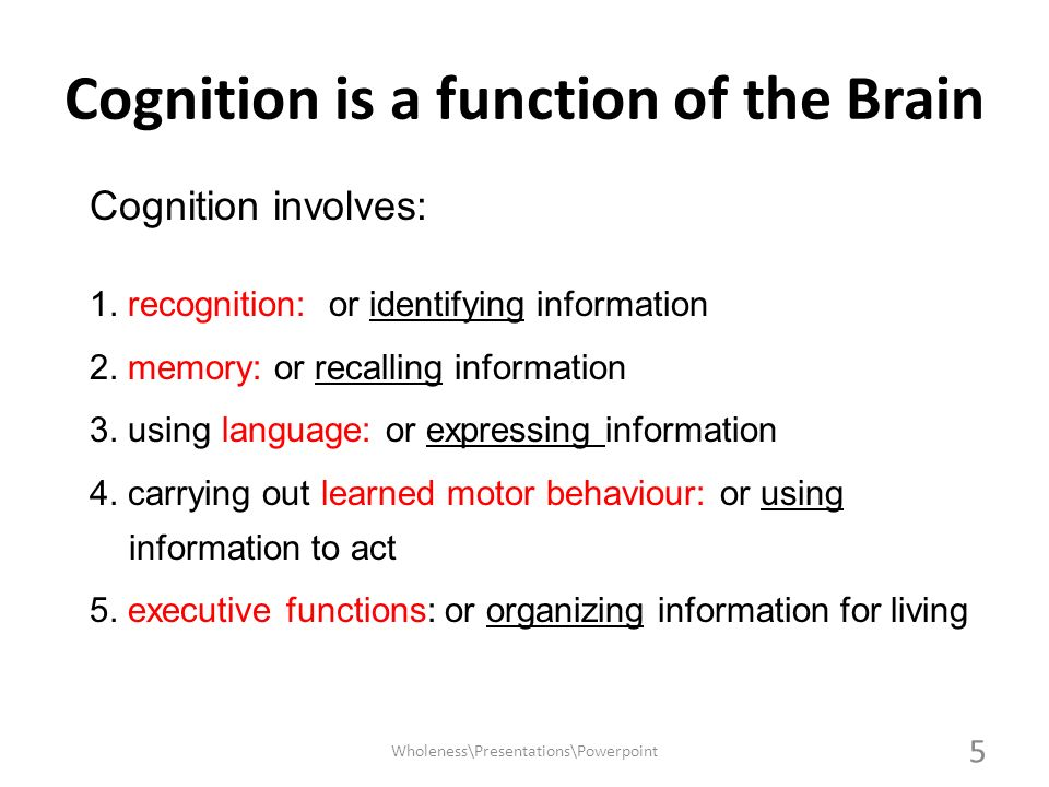 Cognition is a function of the Brain