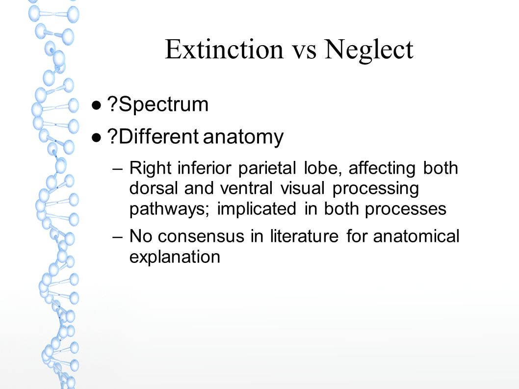 Extinction vs Neglect Spectrum Different anatomy