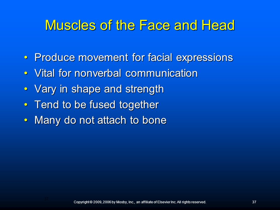 Muscles of the Face and Head