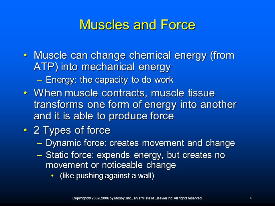 Muscles and Force Muscle can change chemical energy (from ATP) into mechanical energy. Energy: the capacity to do work.